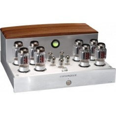 Coppia - Opera Audio Consonance Cyber 300B Mono Blocchi